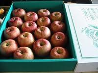 青森産 ふじ 大玉13~16玉入り 5kg詰め(化粧箱入り)リンゴ りんご 林檎