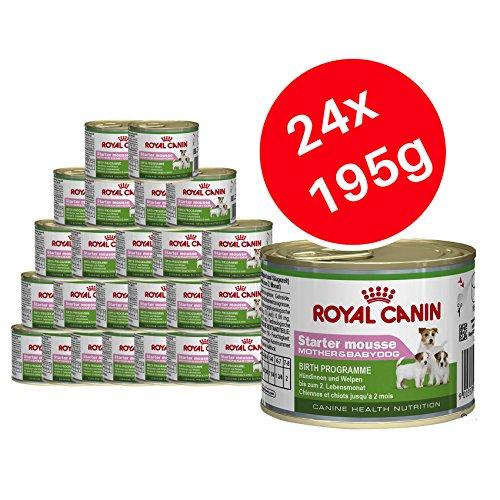 Royal Canin Starter-Mousse, Hundefutter für Mutter & Welpen, 24 x 195 g