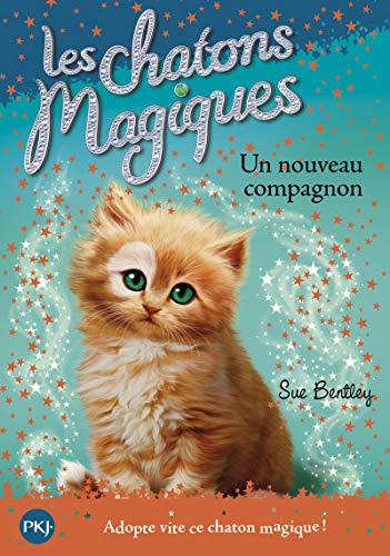 Les chatons magiques - tome 19 : Un nouveau compagnon (19)