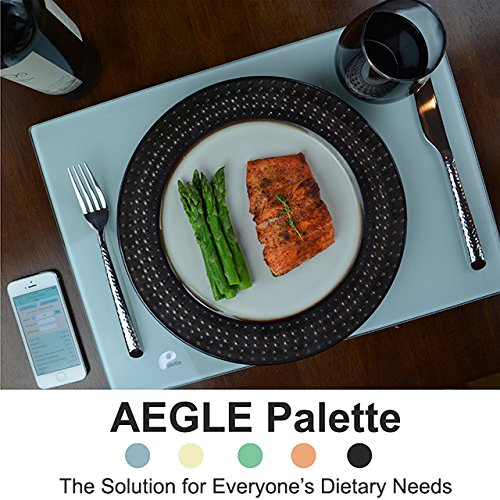 Best Prices! Palette - GPS for Health (Silver)