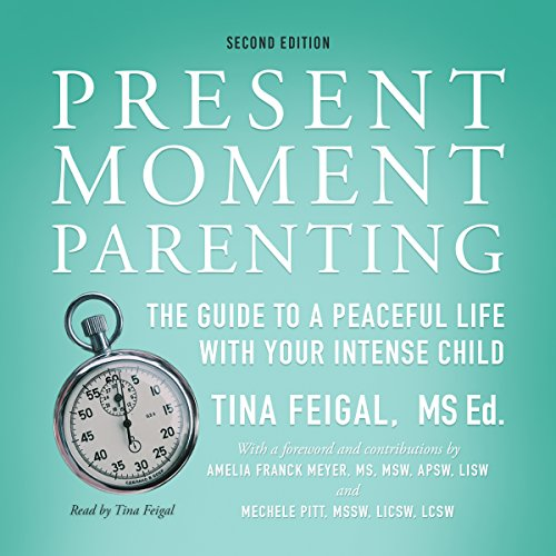 Present Moment Parenting audiobook cover art