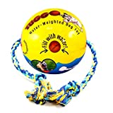 SPOT Tuggo Ball with Rope | Weighted Water-Filled Ball with Tug Rope...