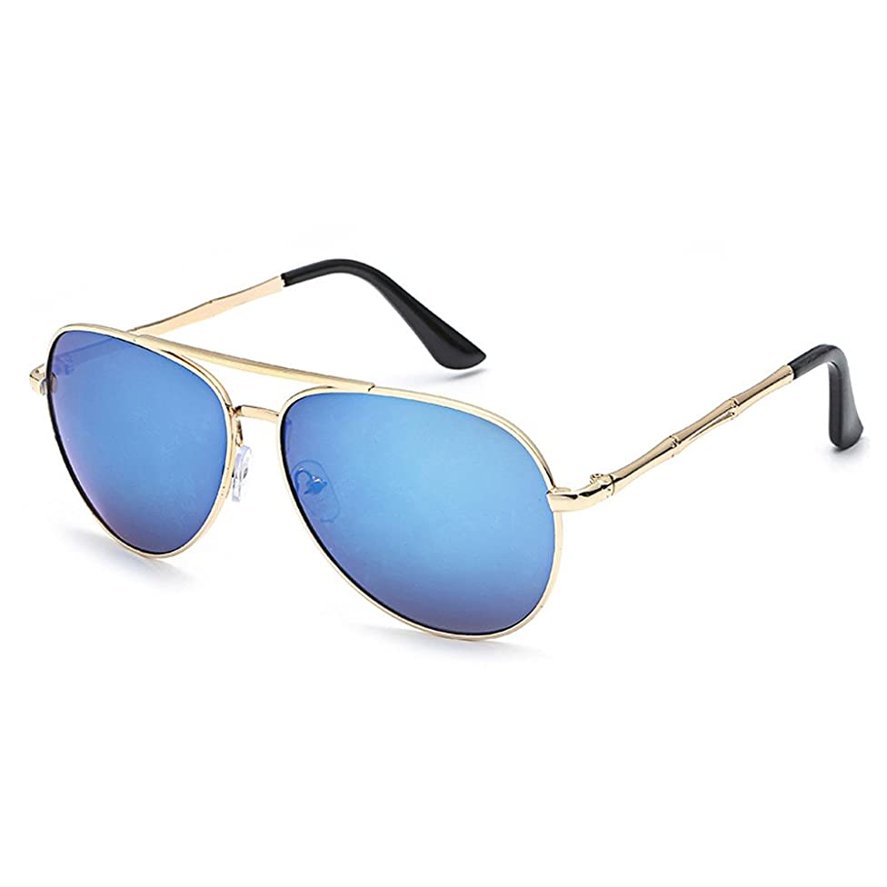 Polarized Sunglasses for Women Men, JOYFEEL Anti-Reflection Drivers Aviator Sunglasses Metal Frame Night Vision Goggles