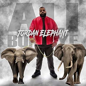 Jordan Elephant