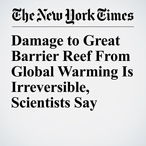 Damage to Great Barrier Reef From Global Warming Is Irreversible, Scientists Say copertina