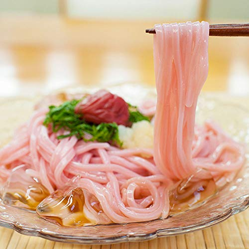 ふみこ農園 梅うどん 冷しうどん 紀州南高梅肉入り冷やしうどん 4食 スープ付き ざるうどん 和歌山県産
