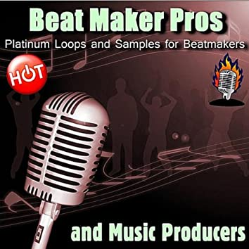 Platinum Loops and Samples for Beatmakers and Music Producers