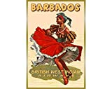 Barbados British West Indian Airways New Retro Pinup Travel Poster Caribbean Islands Tropical Art Print 121 | Poster No Frame Board For Office Decor, Best Gift For Family And Your Friends 11.7*16.5 In