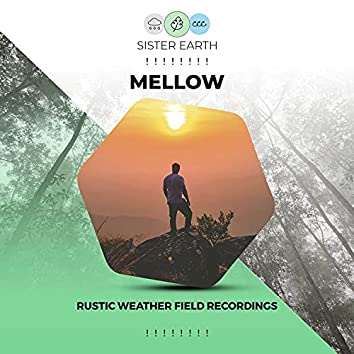 ! ! ! ! ! ! ! ! Mellow Rustic Weather Field Recordings ! ! ! ! ! ! ! !