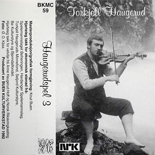 Torkjell Haugerud