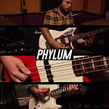 Phylum (feat. Vanessa Zamora, Joakks, Technicolor Fabrics, Wicho, Ray Coyote, Isis Zapata, David Muñoz & Los Master Plus)