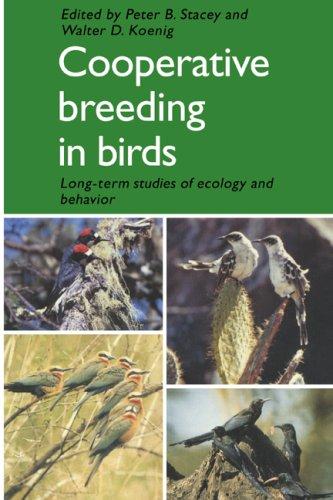 Cooperative Breeding in Birds Paperback: Long Term Studies o