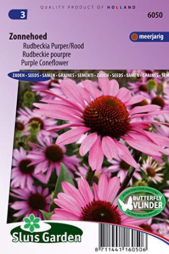 Cono Flor Purper, Echinacea purpurea Flower Seeds