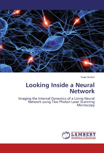 Looking Inside a Neural Network: Imaging the Internal Dynamics of a Living Neural Network using Two Photon Laser Scanning Microscopy
