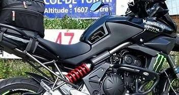 Labelbike Kawasaki