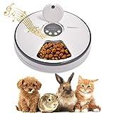 Lacyie Comedero Automático para Perros y Gatos, Dispensador de Comida automático con Temporizador, 6 * 128ml dispensador de Alimentos Secos y húmedos para Perros, Gatos, Conejos y Mascotas Pequeñas