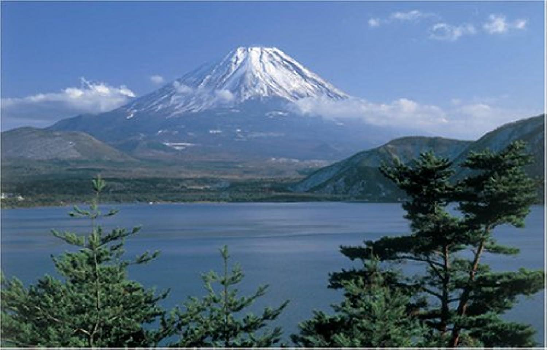 1000 Piece Fuji exhilarating 1000-396 (japan import)