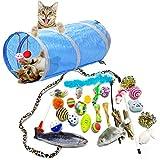 PietyPet Katzenspielzeug, Katze Toys Variety Pack, Spielzeug für Katzen Kitty 31 Stück
