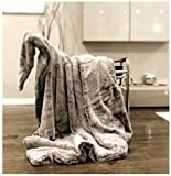 Double Sided Faux Fur Throw Blanket Silky Soft Oversized Afghan Machine Washable, Grey Striped Mink Chinchilla Shadow Fox 55 by 70 Inch (Frosted Coffee)