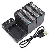 DSTE NP-F970 - Batería y cargador para cámaras Sony CCD-TR500, CCD-TR511E, CCD-TR512E, CCD-TR515E, CCD-TR516, CCD-TR516E, CCD-TR517, CCD-TR555, CCD-TR57 (2 unidades)