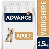 Advance Croquettes pour Chien Adulte Yorkshire Terrier Poulet et Riz 1,5 kg