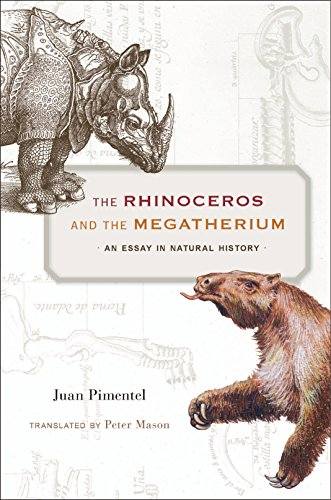 The Rhinoceros and the Megatherium (English Edition)