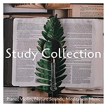 Study Collection: Piano, Violin, Nature Sounds, Meditation Music