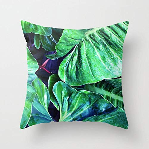 zzxywh Tropical Plants Throw Pillow Case Cactus Palm Banana Leaves Cushion Covers for Home Sofa Chair 45×45cm with pillow core