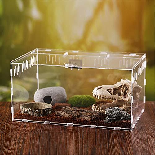 arthomer Frischhaltedose für Reptilien, transparent, aus Acryl, für Krebsen, Geckos, Frosch, Spinnen und kleine Reptilien, 30 x 20 x 15 cm