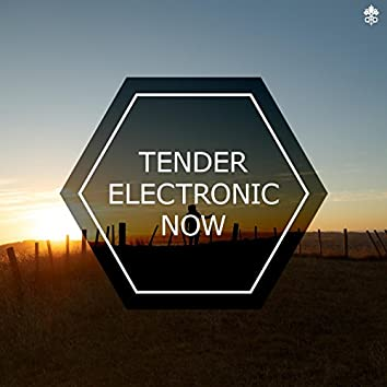 Tender Electronic Now