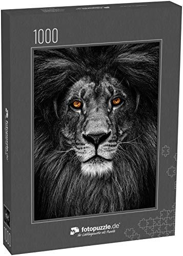 Puzzle 1000 Teile Porträt eines schönen Löwen, Löwe im Dunkeln - Klassische Puzzle, 1000/200/2000 Teile, in edler Motiv-Schachtel, Fotopuzzle-Kollektion 'Tiere'