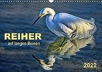 Reiher - auf langen Beinen (Wandkalender 2022 DIN A3 quer): Reiher - auf langen Beinen stelzend auf Nahrungssuche. (Monatskalender, 14 Seiten )