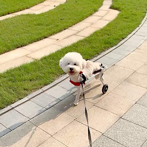 Cora Pet Fahrradanhänger Rollstuhl Hunderollstuhl für Kleiner Hund Katze Kaninchen Hinterbein/Hintere Füße, Hunderollwagen Gehhilfe Hundegehilfe, Wagen für Haustier mit Einem Gewicht von 1-3 KG