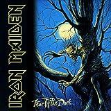 Iron Maiden: Fear Of The Dark (Audio CD)