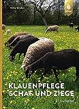 Klauenpflege Schaf und Ziege - Heinz Strobel