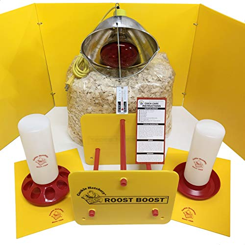 Cackle Hatchery Chick Season Brooder Starter Kit