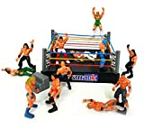 DPNY Wrestling ring Bash WW Smack down fighting Ring With 12 Action Figures Toy Set