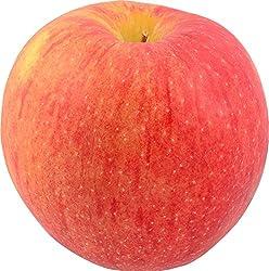 Apple Envy Scilate Organic, 1 Each