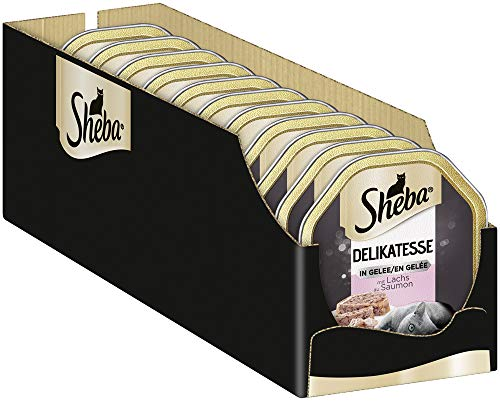 Sheba Delikatesse in Gelee – Hochwertiges Katzen Nassfutter – Geschnetzeltes mit Lachs – In der praktischen Schale – 22 x 85g Alleinfuttermittel