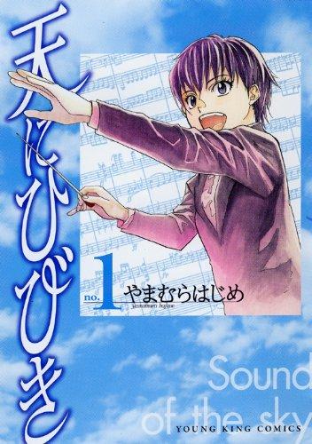 天にひびき 1巻 (ヤングキングコミックス)
