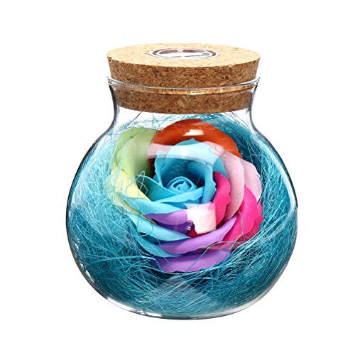 VORCOOL Ewig Blumen Flasche LED Nachtlicht Glasflaschen mit Fernbedienung Gute Geschenk für Valentinstag Muttertag Jubiläum Geburtstag Hochzeit (blau)