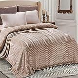 Whale Flotilla Flannel Fleece Queen Size(90x90 Inch) Lightweight Bed Blanket, Soft Velvet Bedspread Plush Fluffy Coverlet Chevron Design Decorative Blanket for All Seasons, Champagne