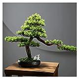ffshop bonsái Artificial 16 Pulgadas Árbol de bonsáis Artificiales, Plantas sintéticas Decoradas por Fawn, para la Oficina en casa, Decoración del jardín Zen (con Cepillo de Limpieza) para decoración