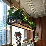 Étagère à Cadre Cubes Suspendue Plafond de Type Support de Fleurs Personnalité Barre Étagères pour Plantes Art de Fer...