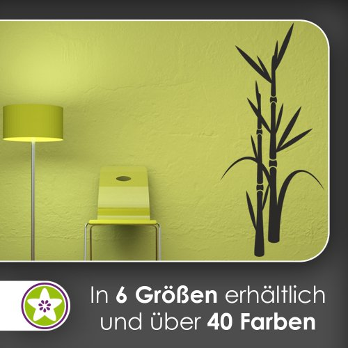 Kiwistar Bambus - Pflanze - Dekoration Wandtattoo in 6 Größen - Wandaufkleber Wall Sticker