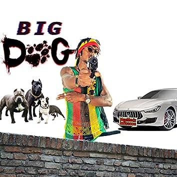 Big Dog: Fully At It
