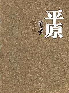 平原(毕飞宇精彩的乡村故事,上世纪七十年代苏北平原上的男女,喧哗而骚动的热闹、扭曲,特有的时代疯狂)