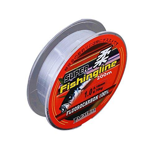 Leezo - Sedal de pesca de fluorocarbono extrafuerte de 200m, hilo de nailon para agua dulce y salada, transparente (de 0,4mm a 8,0mm), 0.4#