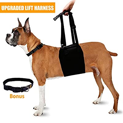 Dog Lift Support Harness Back Sling Helps Rehabilitation Mobility for Elderly Injured Disabled Arthritis Large Breed with Weak Front or Rear Legs, Padded Handle & Adjustable Straps, Black