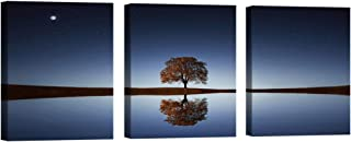 3 Panels Motivational Posters for Classroom Office Wall Art Decor Inspirational Quote Art Motivational Businessman Executive Celebrity Quote Star Moon tree for Office Living Room Bedroom Home Decor